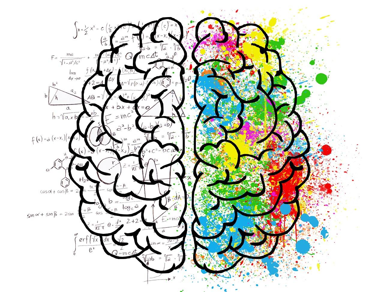 Neuroplasticity and Trauma Treatment