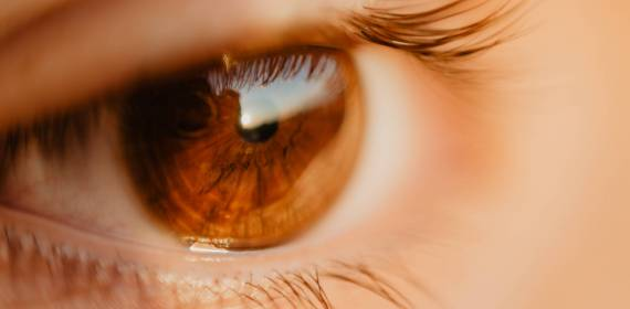 EMDR therapy in the spotlight!